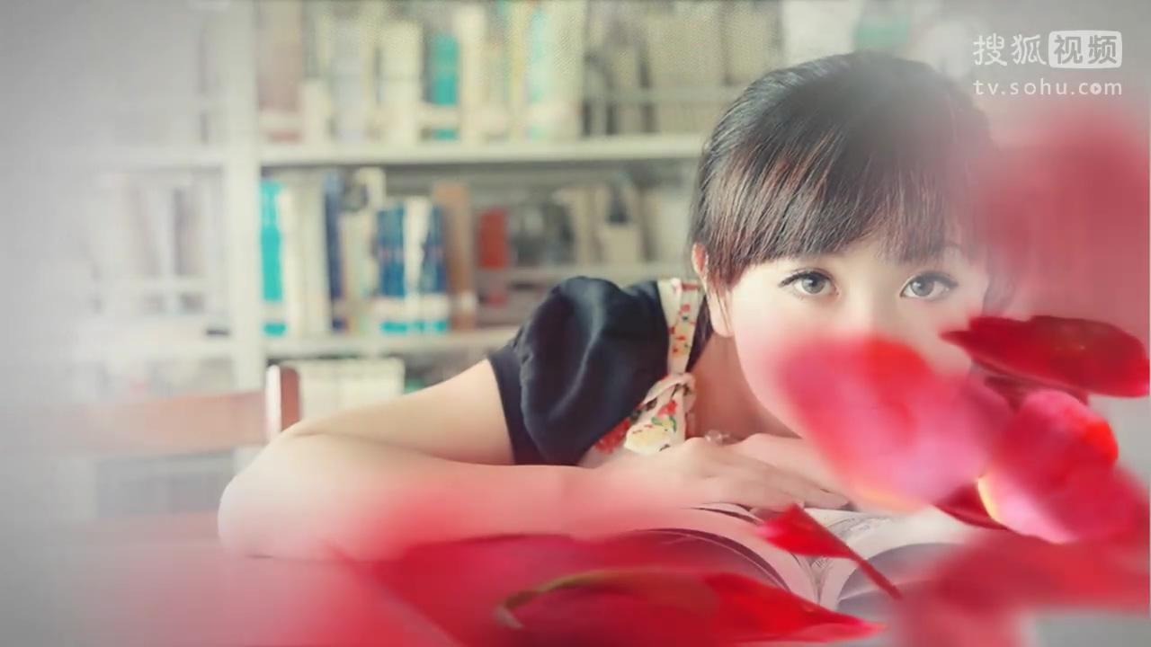 会声会影x6x7模板 小清新花瓣雨玫瑰爱情韩式婚礼
