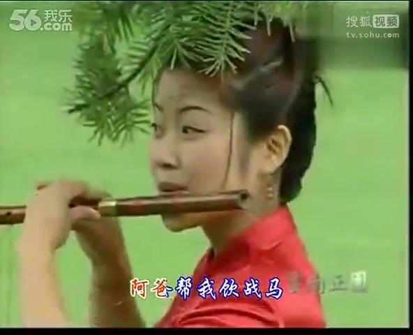 笛子独奏曲_骏马奔驰保边疆【高清】